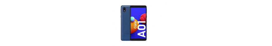 A01 CORE - A013F